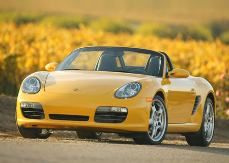 It is sensible to get an expert opinion before buying a used Porsche.